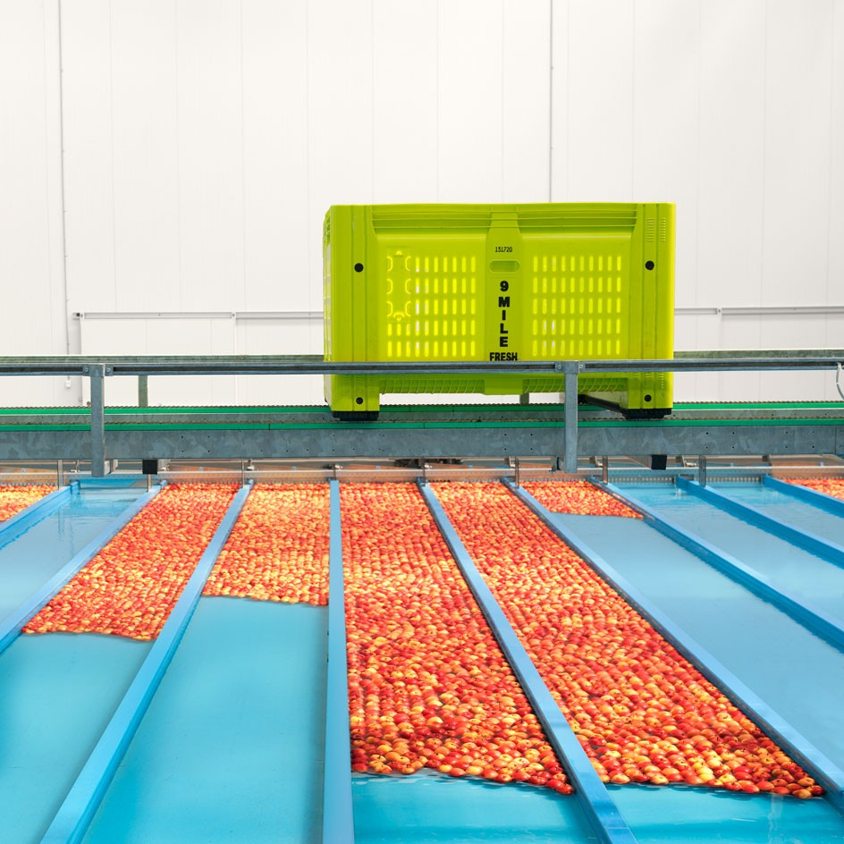 <div>corporate</div><div> <a href='https://nedmeldrum.com.au/project/nine-mile-fresh-apple-sorting-facility/'>View Series</a></div>