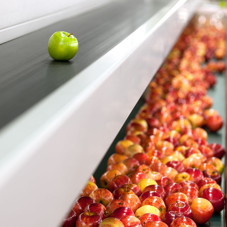 <div>Industrial</div><div> <a href='https://nedmeldrum.com.au/project/nine-mile-fresh-apple-sorting-facility/'>View Series</a></div>